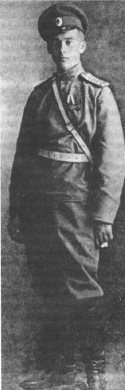 Дмитрий Боткин, 1914 год