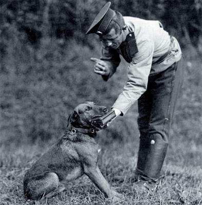 Русский солдат обучает собаку